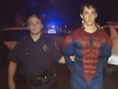 Display n spider man arrested large