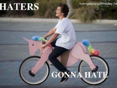 Display haters gonna hate pink unicorn bike